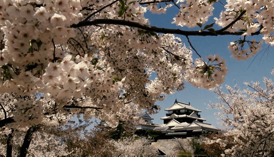 Matsuyama-Castle-02